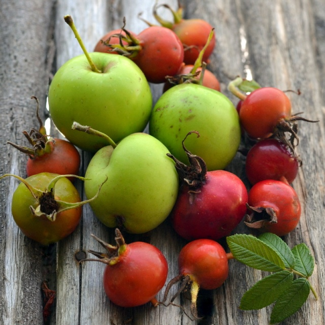foraged-wild-apples-and-rosehips